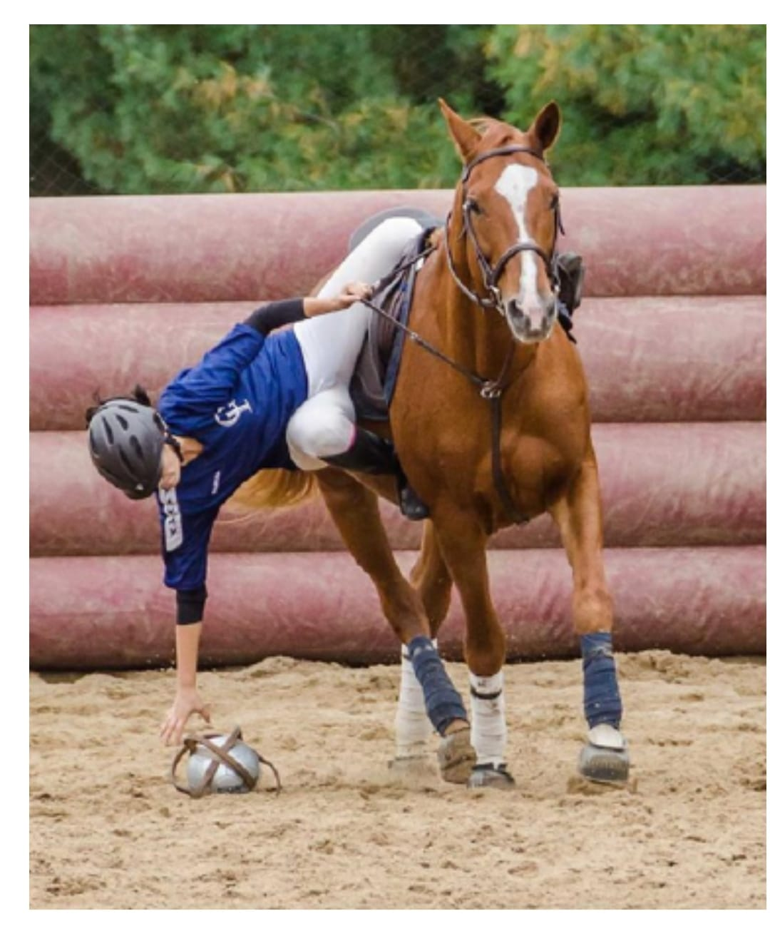 jeux a poney horse-ball