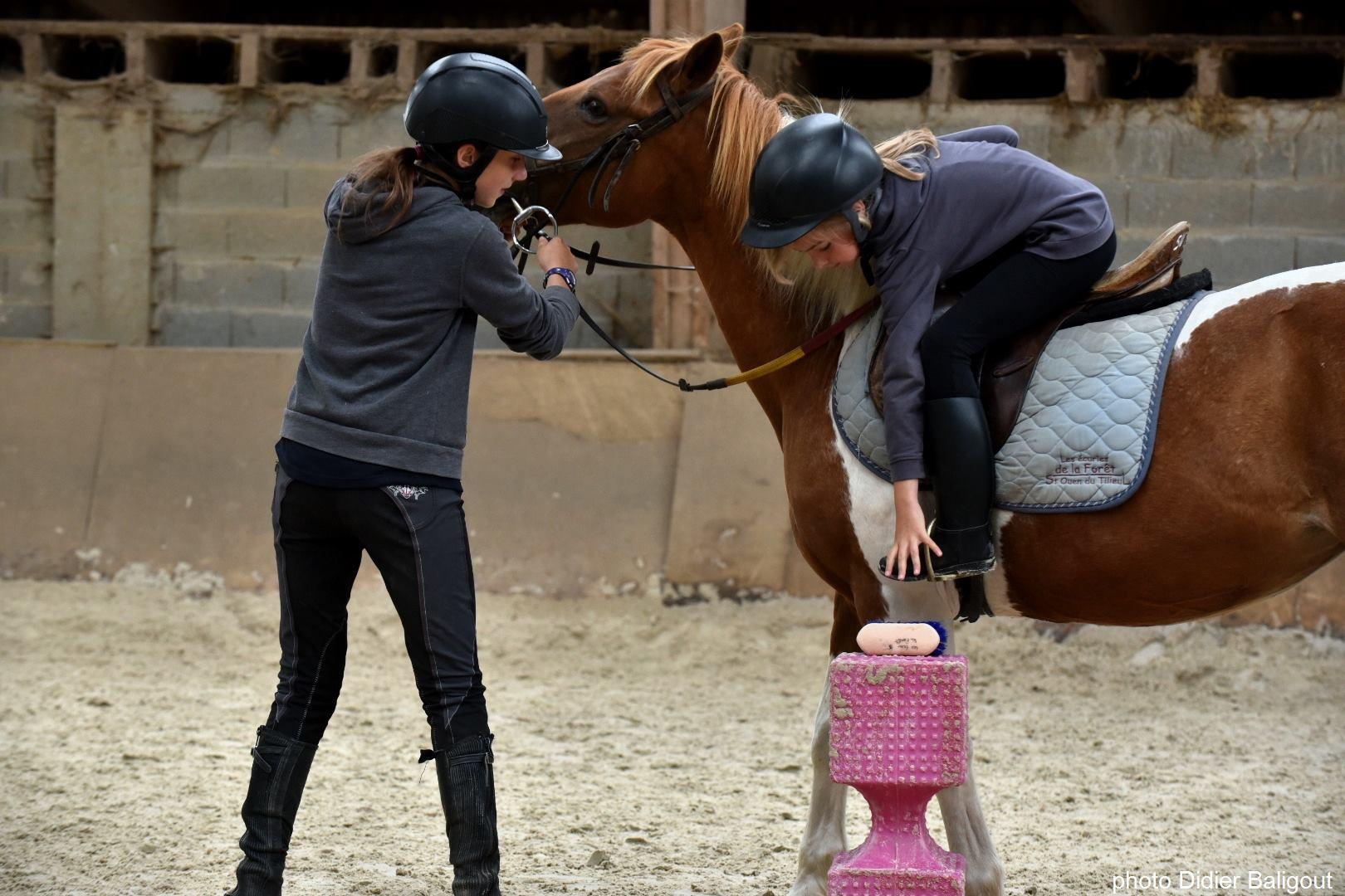 jeux à poney horse-ball
